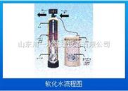 洗衣房用水山東川一水處理軟化水設備