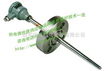 KE1101B工业酸度计