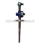 WRN石油化工热电阻系列