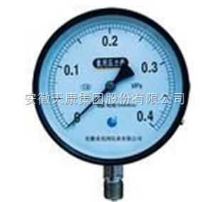 Y-100白绣钢氨用压力表