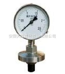 YTP-100全塑隔膜压力表