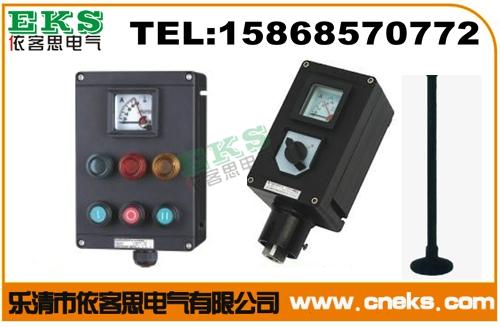 LNZ-A2B1D2K1L-500/1带电流表操作柱(立式)