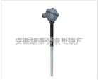 WZP2F-130防腐型热电阻