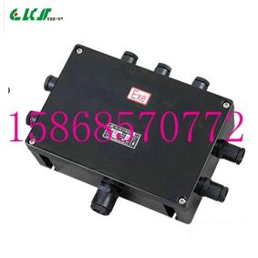 BJX8050-T防爆防腐接线箱 订做非标防爆防腐接线箱