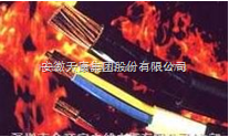 NH-BVV铜芯聚氯乙烯绝缘聚耐火电缆(电线)