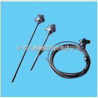 WZPK-138无固定铠装热电阻