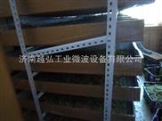 供应净化式对开门微波灭菌烘箱