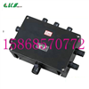 BJX8050-TBJX8050-T防爆防腐接线箱 订做非标防爆防腐接线箱